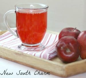 Red Hot Apple Cider is a fun drink to enjoy while tailgating, pumpkin carving, or decorating your Christmas Tree.