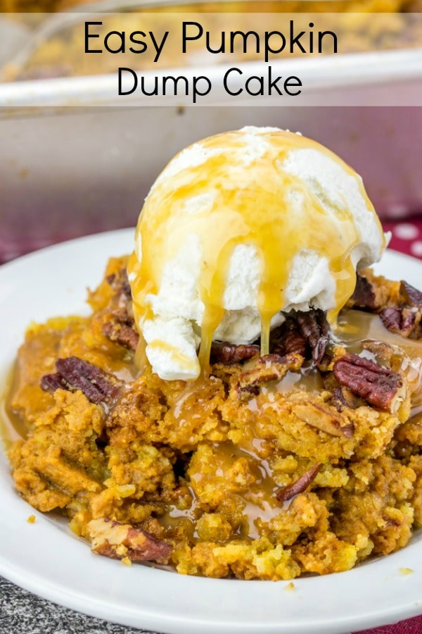 Easy Pumpkin Dump Cake is everything wonderful about fall in a pan. It's an easy recipe that perfect for feeding a crowd. This Easy Pumpkin Dump Cake is also the perfect dessert for Thanksgiving!