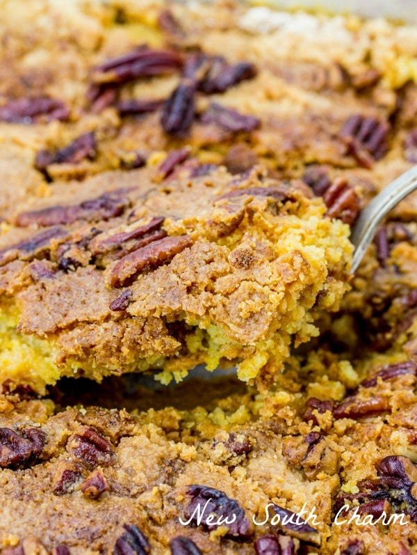 Easy Pumpkin Dump Cake is contains all the wonderful flavors of Fall in a simple cake the perfect for enjoying with a scoop of ice cream.