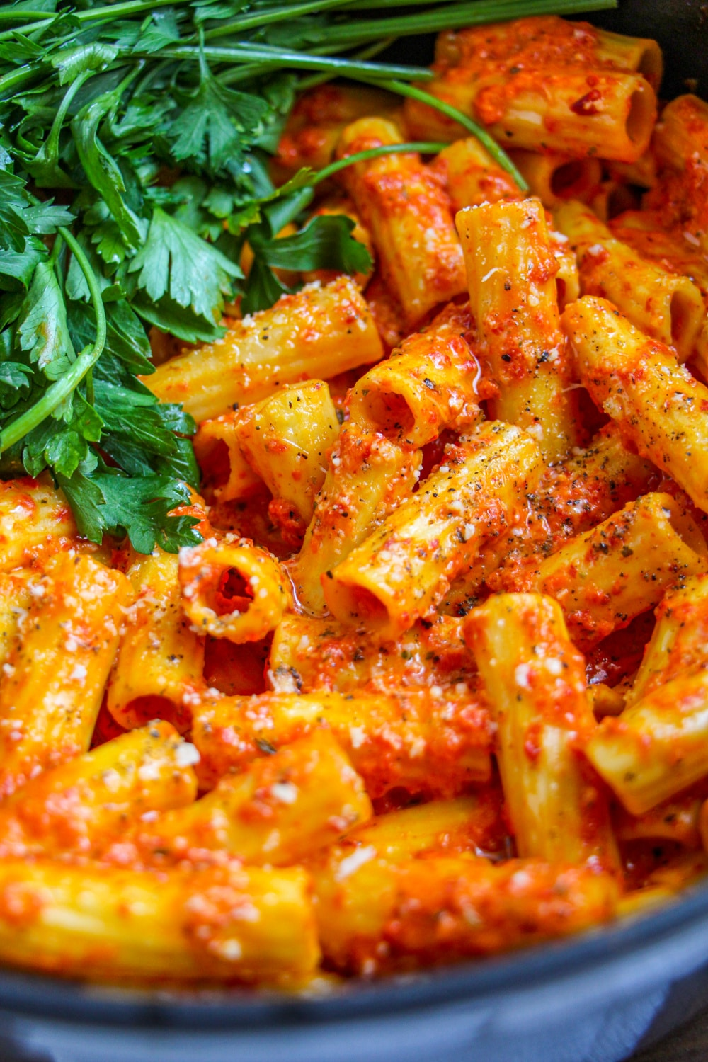 Close up of pasta in red pepper sauce garnished with parsley.